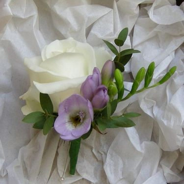 Rose & freesia buttonhole