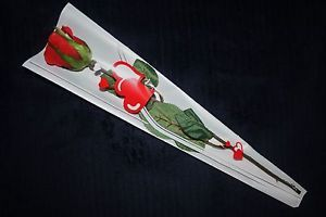 Single red rose in gift bag